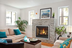 regency direct vent gas fireplace