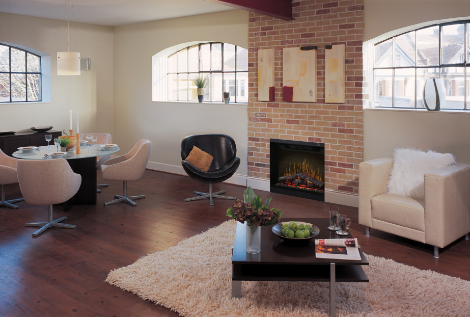 Fireplace Design fireplace firebox : Electric Insert | FIREPLACE DEPOT