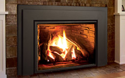 Enviro gas insert fireplace